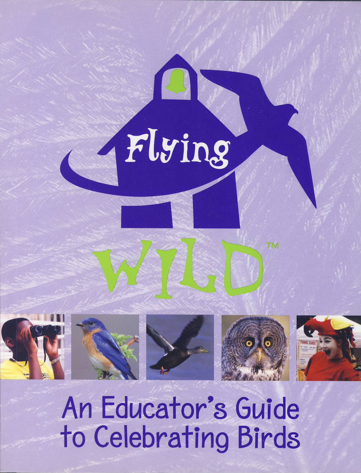 Cover of Flying Wild - An Educator's Guide to Celebrating Birds